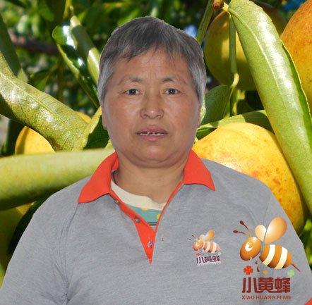<b>小黄蜂冬枣团队户大姐</b>
