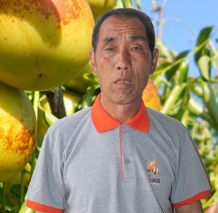 小黄蜂冬枣团队王立明